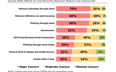 Cybersecurity Issues That Concern Decision Makers Most