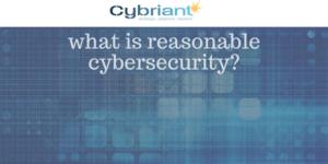 reasonable cybersecurity