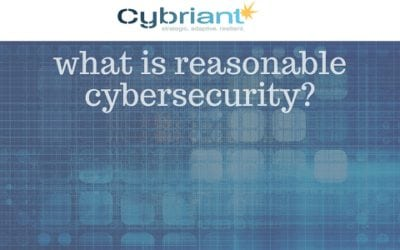 Defining Reasonable Cybersecurity