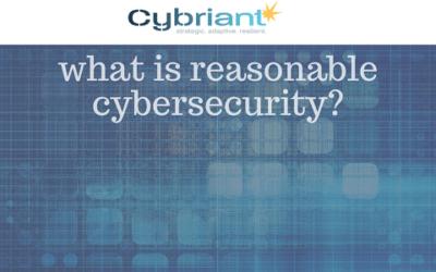 Defining Reasonable Cybersecurity